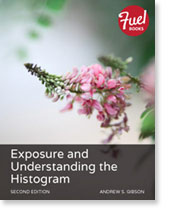 Exposure and Understanding the Histogram ebook cover