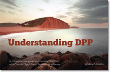Understanding DPP ebook cover