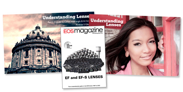 Understanding Lenses bundle