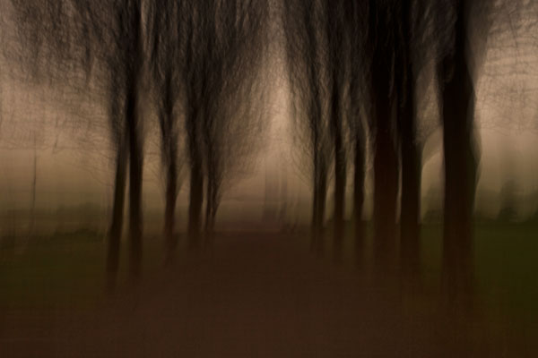 Intentional camera movement (ICM) ph
