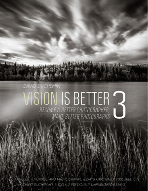Vision is Better 3 ebook cover