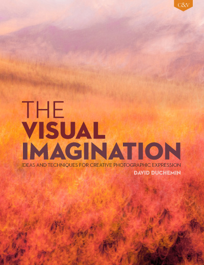 The Visual Imagination ebook